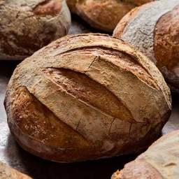 5-Minute Artisan Bread Recipe