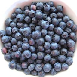 About Freezing Blueberries