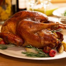 Accidental Turkey