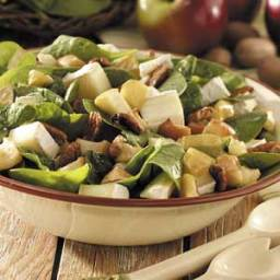 Apple-Brie Spinach Salad Recipe