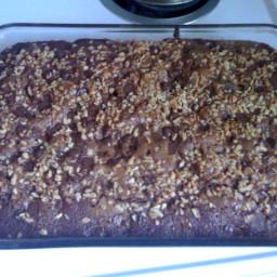 Applesauce Chocolate Cake