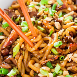 Asian Style Udon Noodles with Pork and Mushrooms
