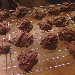 Aunt Sandra's Double Chocolate Chip Cookies