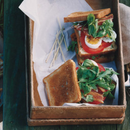 Bacon, Egg, and Tomato Club Sandwiches