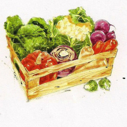 Basic Salad Dressing