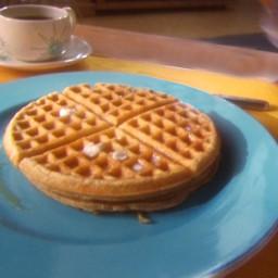 Basic Waffle