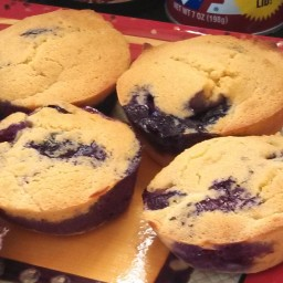 Blueberry Muffins with Coconut Flour