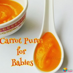 Carrot Puree for Babies