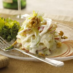 Chavrie Fennel Apple Salad
