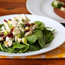 Chicken Salad with Dried Cherries and Pistachios