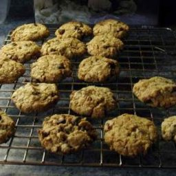 Chocolate Chip-Oatmeal Cookies