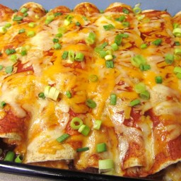 Cream Chicken Cheese Enchiladas