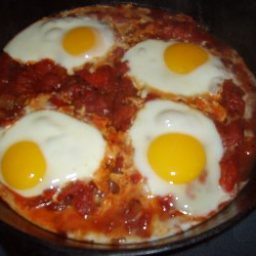 curried eggs and tomatoes