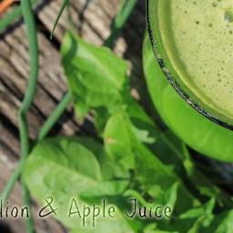 Dandelion and Apple Juice