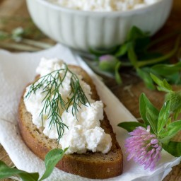 Dilly Ricotta Dip