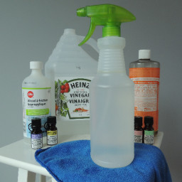 DIY Multi-Purpose Floor and Glass Cleaner