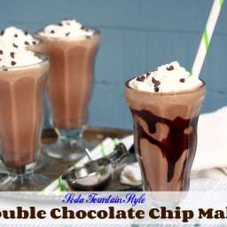 Double Chocolate Chip Malts