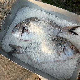 Fish cooked in Salt