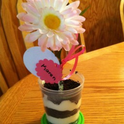 Flower Pot Dessert