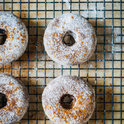 Fluffy Vegan Apple Cider Donuts w/ Powdered Cinnamon Sugar