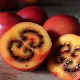 Fruitsap van Tamarillo of Tomate de Arbol