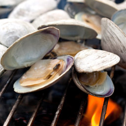 Grilled Clams With Lemon-Cayenne Butter