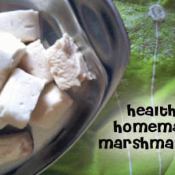 Healthy Probiotic Marshmallows