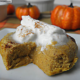Healthy Pumpkin Pie Custard: Gluten Free and Low Carb