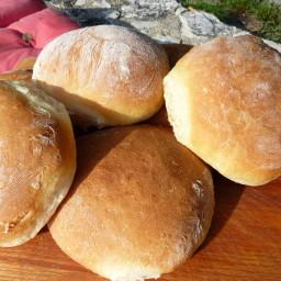 Homemade panini