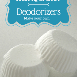 Homemade Refrigerator Deodorizers