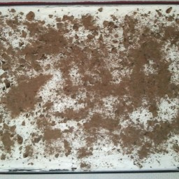Cowboy Cake (Next best thing to Robert Redford)
