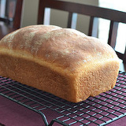 King Arthur White Bread