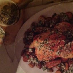 Lemon, Parsley and parmesan chicken