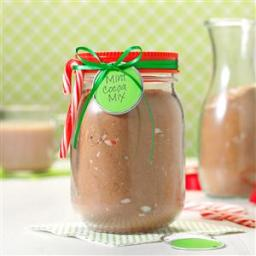 Mint Cocoa Mix Recipe