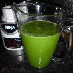 Moster Green Juice for the Ninja