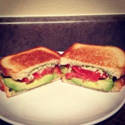 Mozzarella, tomato, pesto, avocado sandwich