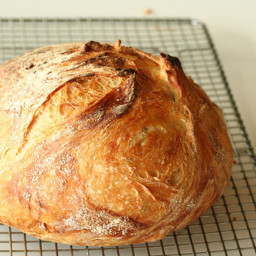 No-Knead Bread Revisited