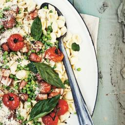 Orecchiette with Roast Tomatoes and Pecorino and Cream Sauce