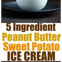 Peanut Butter Sweet Potato Ice Cream