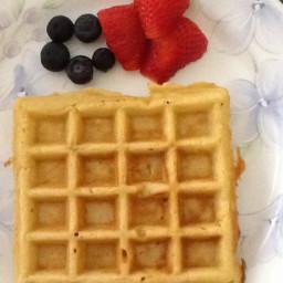 Plain Waffles