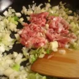 Pork Yakisoba with Japanese Leek Sauce