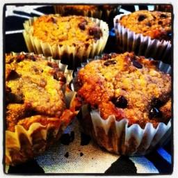 Gluten-Free Pumpkin Chocolate Chip Muffins