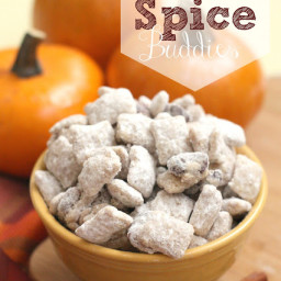 Pumpkin Spice Buddies
