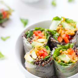 Quinoa Summer Rolls with a Thai Peanut Sauce