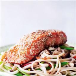 Salmon on Noodles