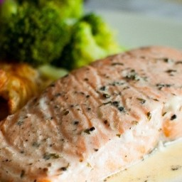 Salmon Steaks With Wine Sauce