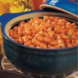 Salsa Pinto Beans Recipe