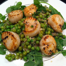 Scallops with Lemon and Pea Relish