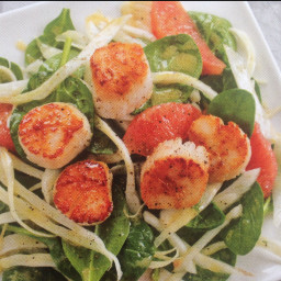 Seared scallops with spinach, Fennel and grapefruit salad