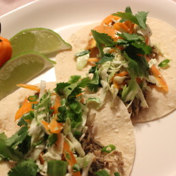 Shredded Jerk Jackfruit Tacos with Creamy Coconut Slaw